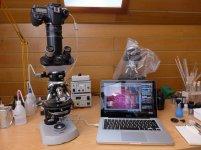 Mikroskop szkolny